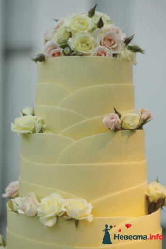 Фото 99494 в коллекции Торты - Свадебный распорядитель. Яна