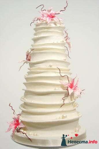 Фото 99514 в коллекции Торты - Свадебный распорядитель. Яна