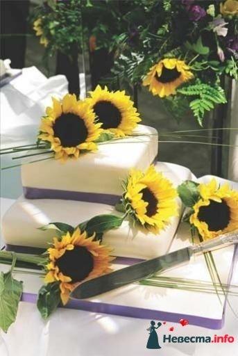 Фото 99517 в коллекции Торты - Свадебный распорядитель. Яна