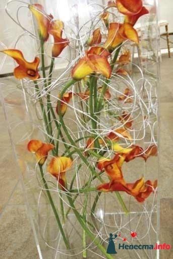 Фото 99610 в коллекции Флористика - Свадебный распорядитель. Яна
