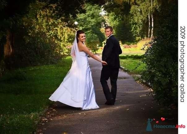 Фото 82996 в коллекции Свадебные фотографии от aallaa  - aallaa.net