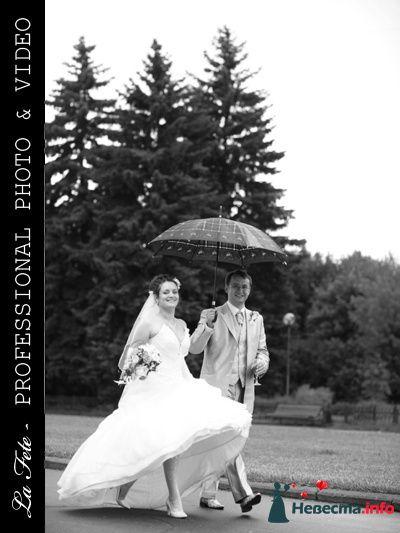 Фото 85524 в коллекции Мои фотографии - Видео студия La Fete - свадебные фото