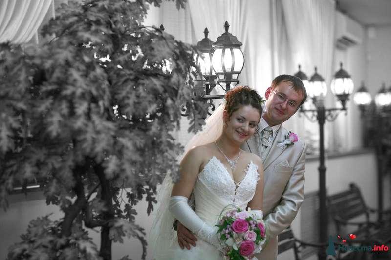 Фото 85549 в коллекции Мои фотографии - Видео студия La Fete - свадебные фото