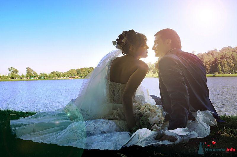 Фото 83557 в коллекции WeddingPhoto