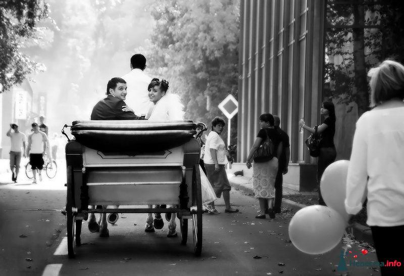 Черно- белая карета, едущая по улочкам городка с милой парой в салоне. - фото 83565 Невеста01