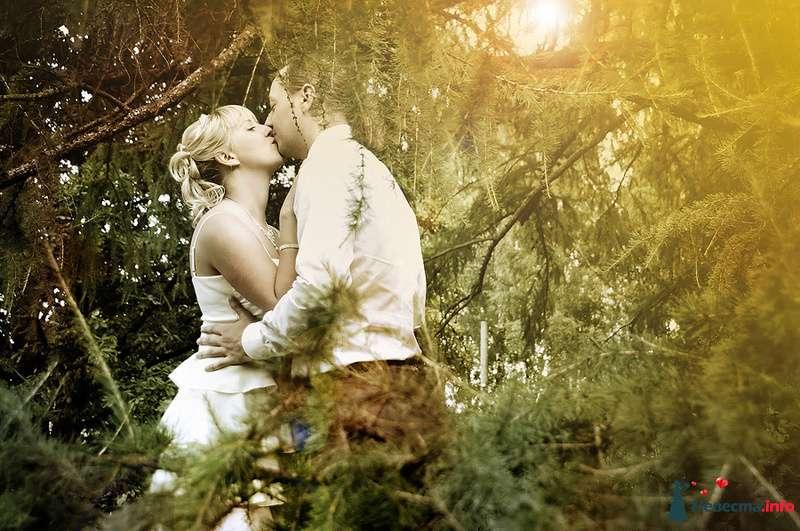 Фото 83566 в коллекции WeddingPhoto - Невеста01