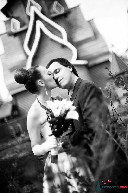 Фото 104296 в коллекции WeddingPhoto - Невеста01