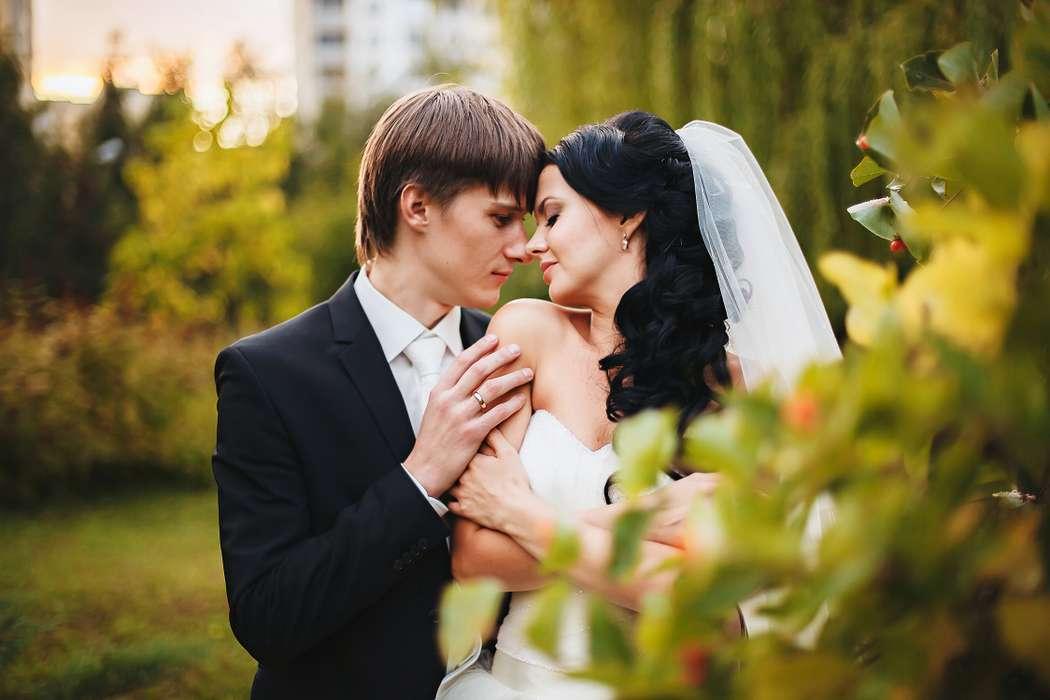 очередном мои свадебные фотографии оформлен спокойных
