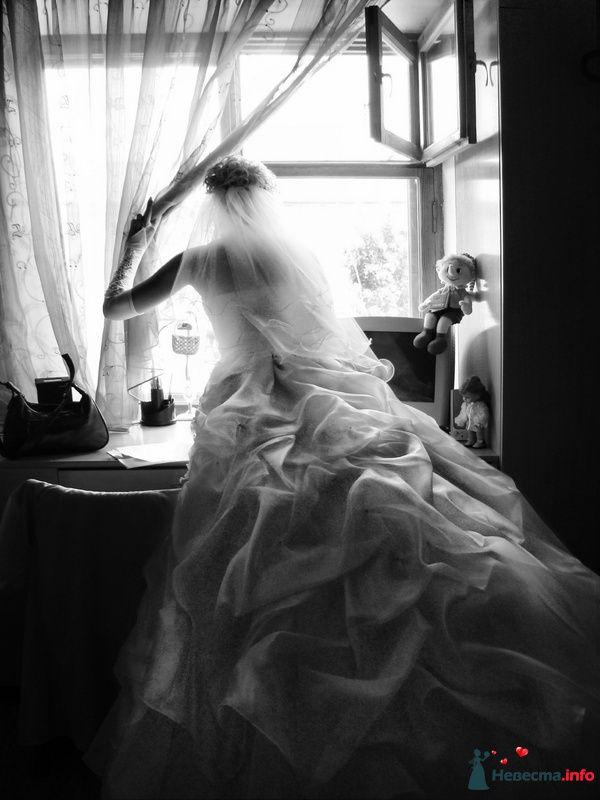 Свадебное видео и фото. 8 (918) 64 46 111 - фото 99289 Melodika