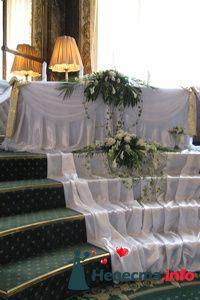 Фото 85487 в коллекции Мои фотографии - Оформление свадьбы от «ДекорПрофи»