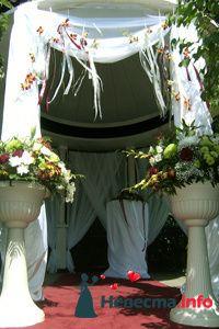 Фото 85488 в коллекции Мои фотографии - Оформление свадьбы от «ДекорПрофи»