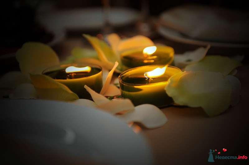 """Фото 86504 в коллекции Свадьба """"Алый цветок"""" - La fiancée Juill"""