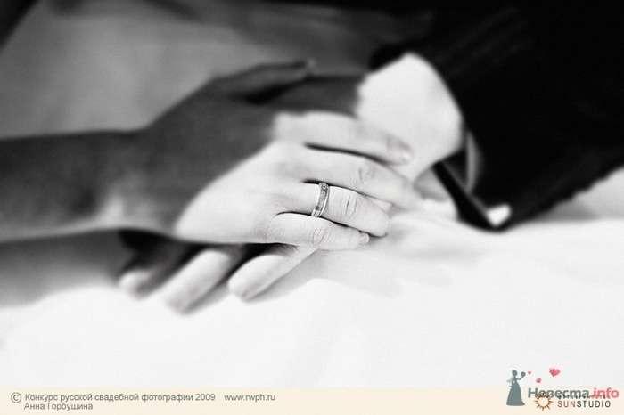 Фото 25499 в коллекции Финал Конкурса русской свадебной фотографии 2009. Фотоотчёт - Анна Горбушина - фотоагентство SunStudio