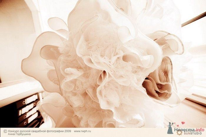 Фото 25517 в коллекции Финал Конкурса русской свадебной фотографии 2009. Фотоотчёт - Анна Горбушина - фотоагентство SunStudio
