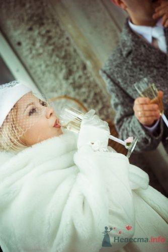 Фото 12949 в коллекции Свадебное - Фотограф Елена Зотова
