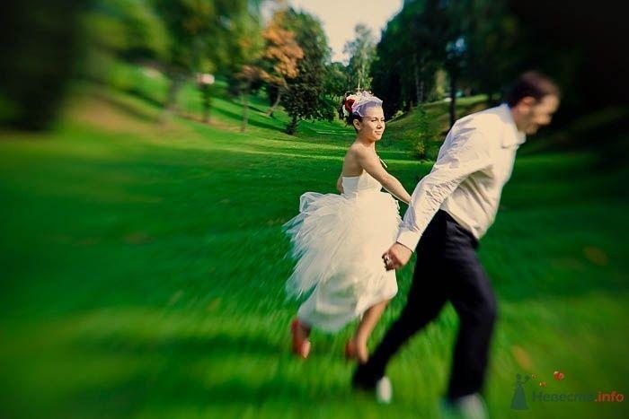 Фото 42022 в коллекции Свадьба Карины и Романа