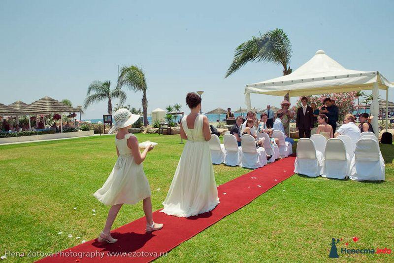 Фото 111055 в коллекции Кипр. Свадьба Кати и Сережи