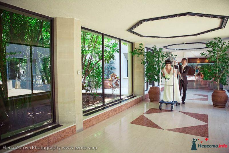 Фото 111095 в коллекции Кипр. Свадьба Кати и Сережи - Фотограф Елена Зотова