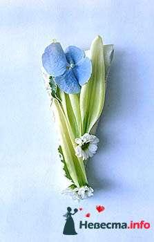 """Фото 99681 в коллекции Мои фотографии - Студия цветочного дизайна """"Ваш флорист"""""""