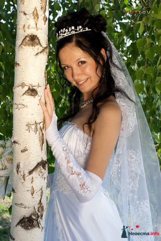 Фото 87351 в коллекции Amatour (свадебное) - Amatour