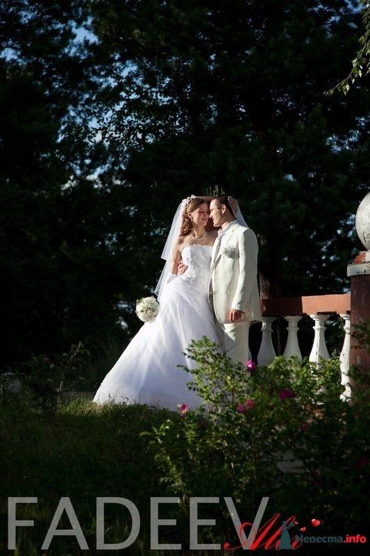 Фото 115175 в коллекции Свадьба Натальи и Александра - Amatour