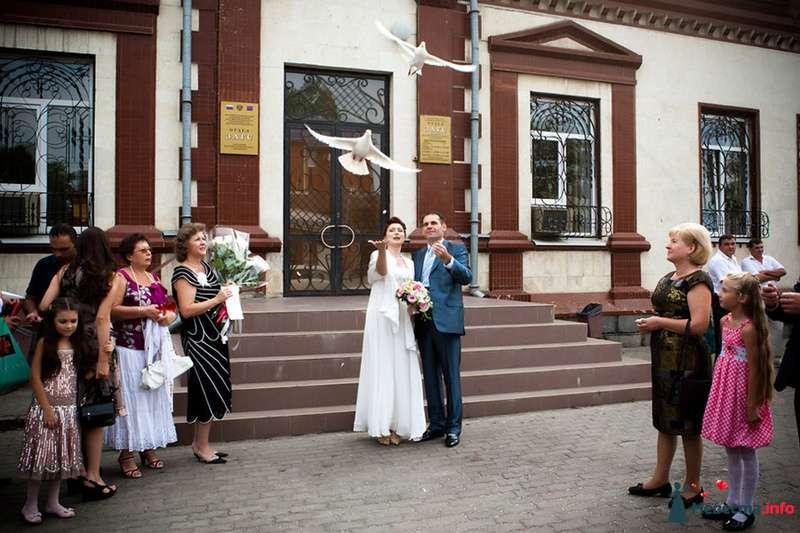 **** - фото 129010 Дмитрий Коробкин. Свадебный фотограф.