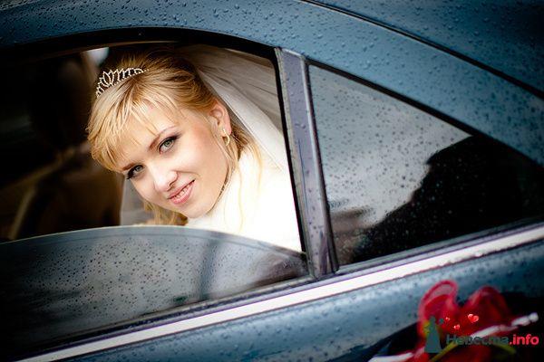 **** - фото 129215 Дмитрий Коробкин. Свадебный фотограф.