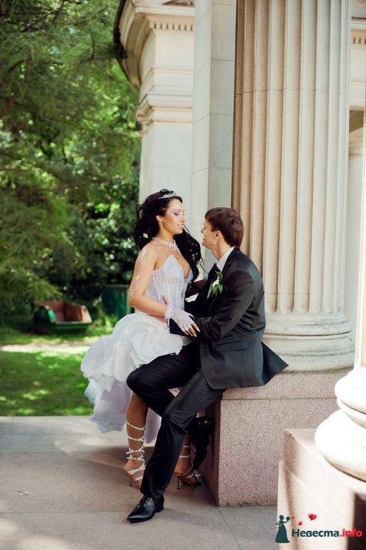 Фото 89210 в коллекции Свадьба - Любовь Ю.