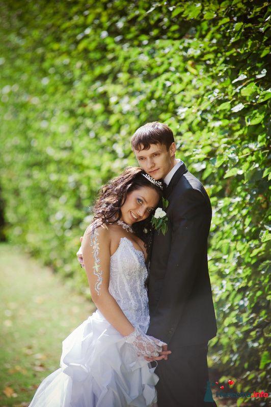 Фото 89213 в коллекции Свадьба - Любовь Ю.
