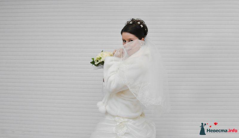 Фото 89632 в коллекции Мои фотографии - Невеста01