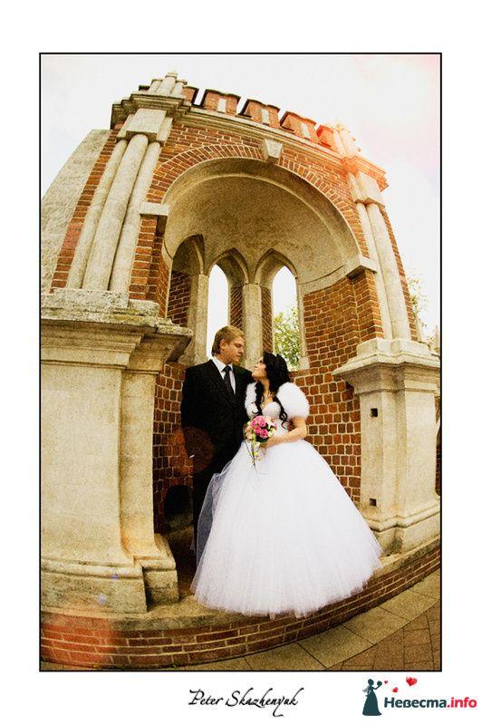 Авторская обработка фотографий  - фото 88702 Свадебный фотограф Петр Скаженюк