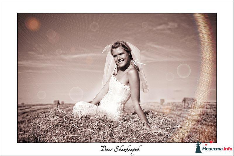 Свадьба фотограф Петр Скаженюк  - фото 88563 Видеооператор Алексей Никулин