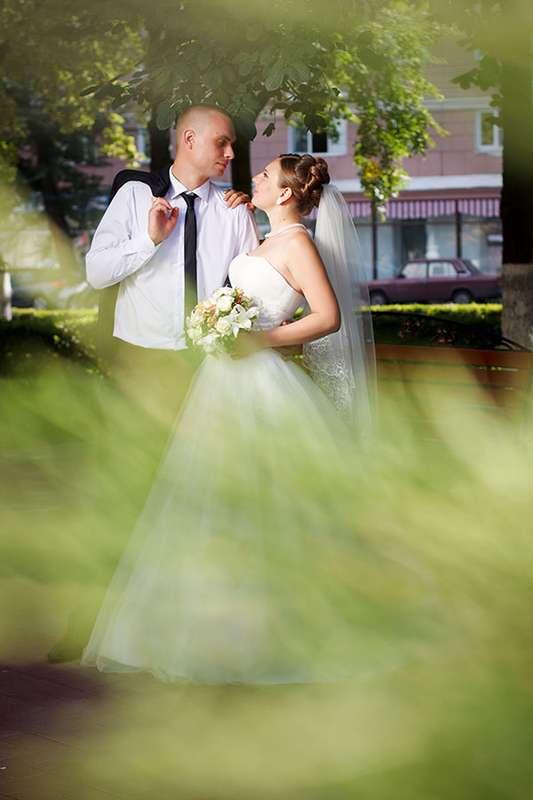 Фото 2014402 в коллекции Свадебные фотосессии - Фотограф Инна Круглова