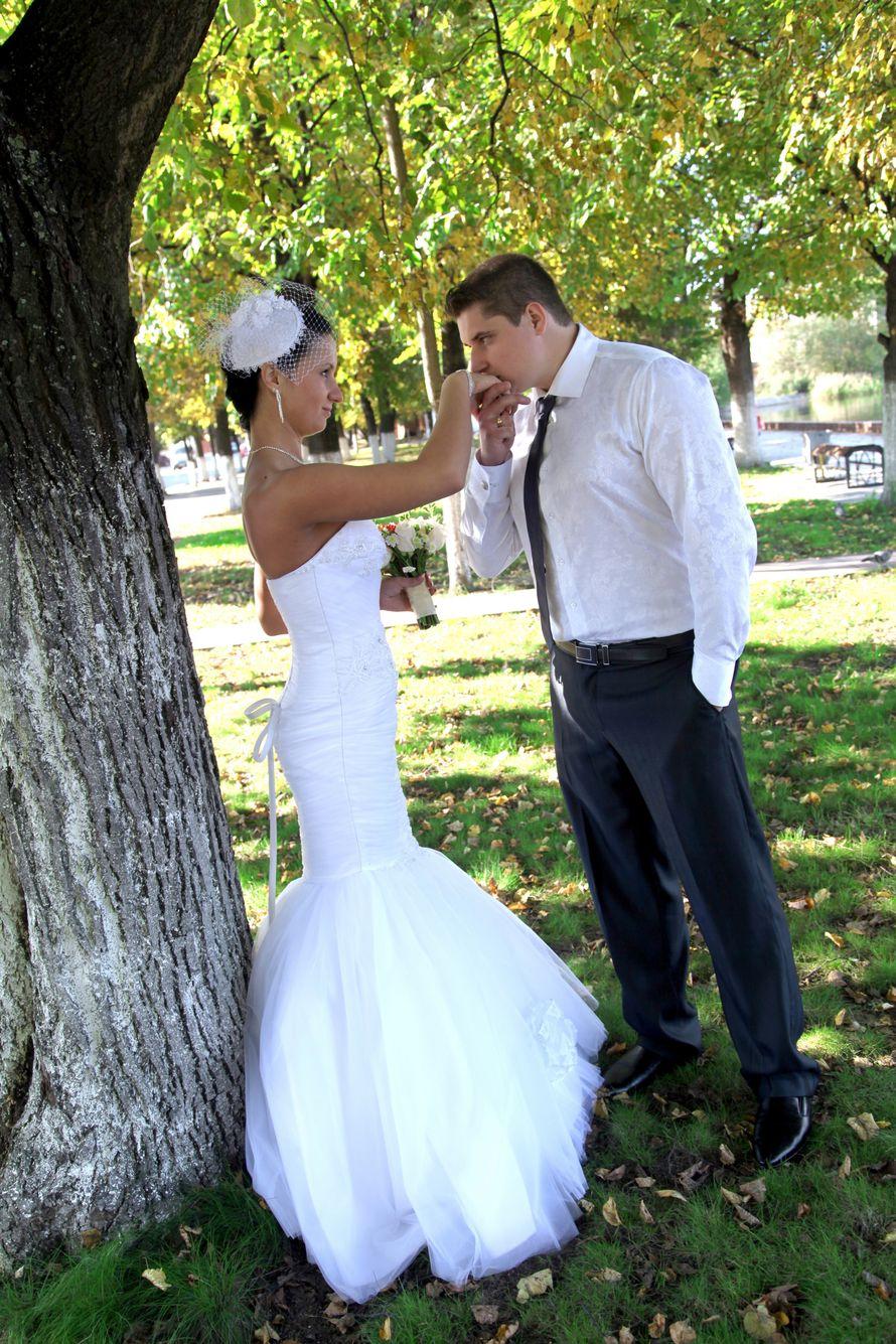 Фото 2313482 в коллекции Свадебные фото - Видеограф Пичугин Антон