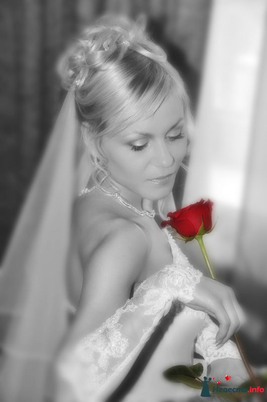 Фото 112330 в коллекции Моя свадьба!!!