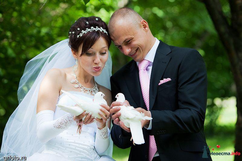 Фото 89541 в коллекции Свадьбы