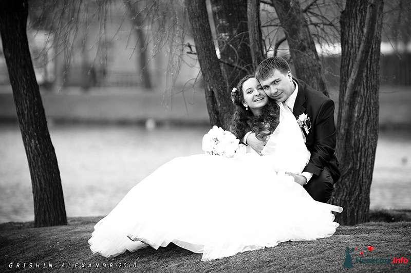 Фото 102072 в коллекции Свадьбы - Фотограф Гришин Александр