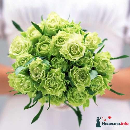 Фото 104550 в коллекции Мои фотографии - Невеста01