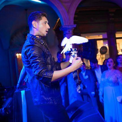 Иллюзионное шоу: голуби, ментализм (20 минут)