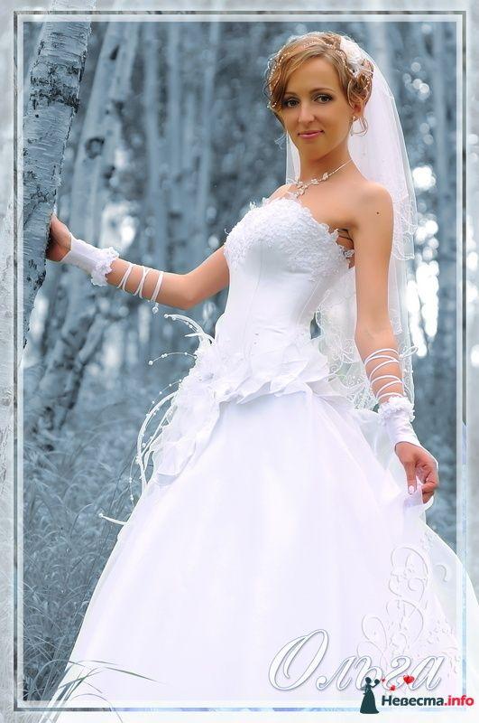 Фото 94743 в коллекции Из разных свадеб - Фотостудия Александра Золотарёва