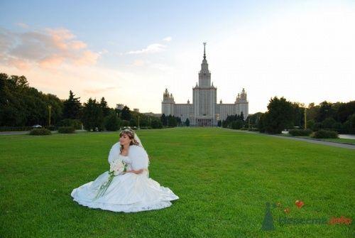 Фото 6309 в коллекции Мои фотографии - Фотограф Мальцев Алексей