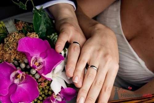 Свадебные кольца - фото 13356 Art union profi - агентство свадебных торжеств
