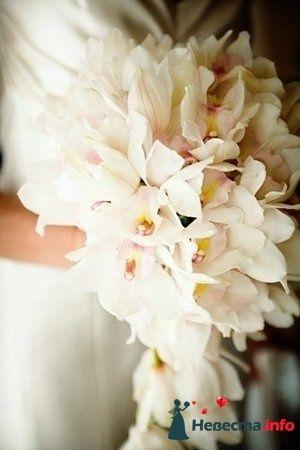 Фото 112900 в коллекции Свадебная флористика - Александра Ваш Свадебный Распорядитель
