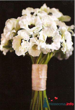 Фото 112901 в коллекции Свадебная флористика - Александра Ваш Свадебный Распорядитель