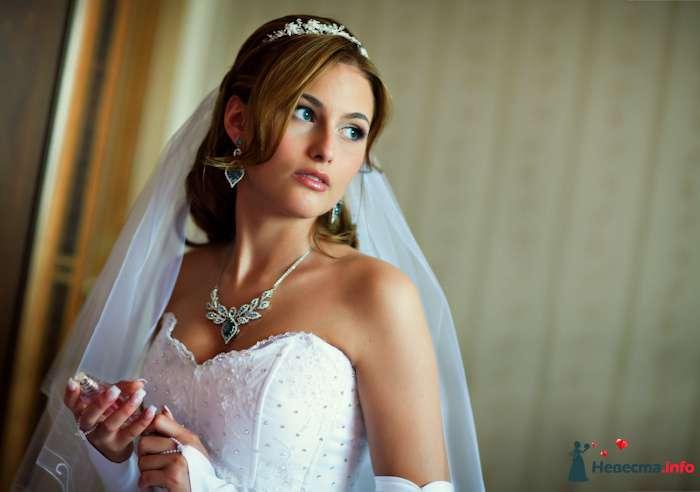Фото 91887 в коллекции Мои фотографии - Свадебный фотограф Роман Пламеневский