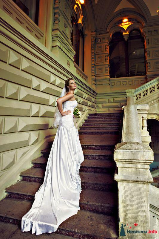 Фото 91922 в коллекции Мои фотографии - Свадебный фотограф Роман Пламеневский