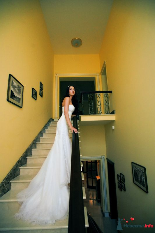 Фото 91927 в коллекции Мои фотографии - Свадебный фотограф Роман Пламеневский