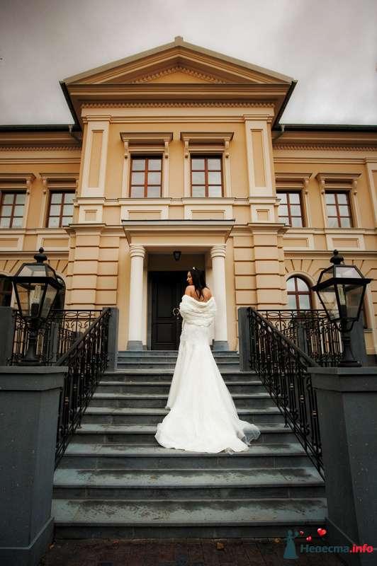 Фото 91928 в коллекции Мои фотографии - Свадебный фотограф Роман Пламеневский