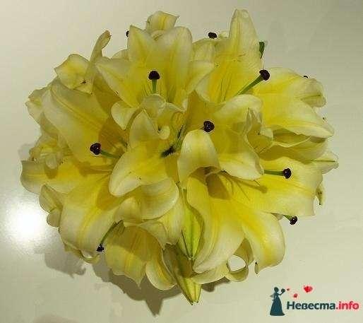 Фото 115315 в коллекции Любимые лилии - свадебные букетики - kosca