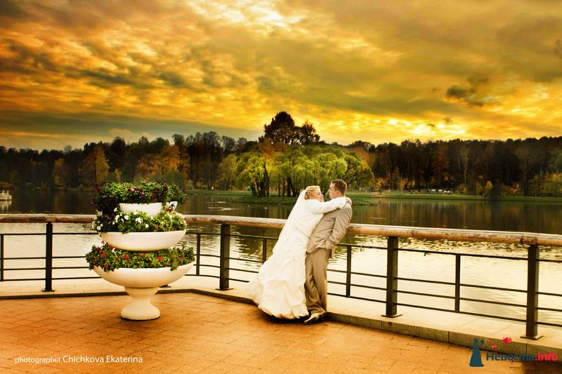 Фото 92225 в коллекции Свадьба